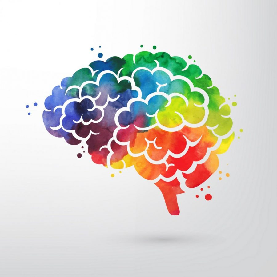 Effects of Color on Brain and Body