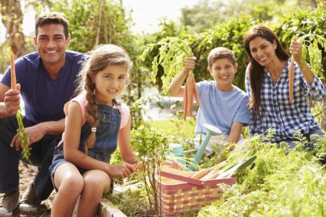 The Growing Benefits of Gardening