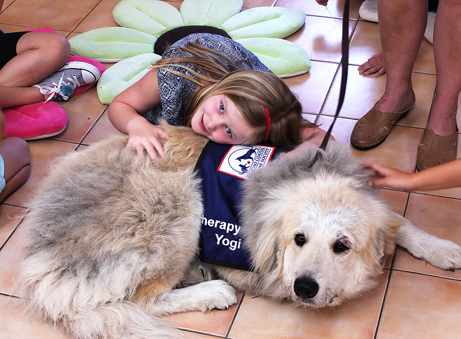 The Benefits of Therapy Animals