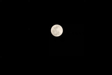 """Full Moon in the Dark, Night Sky"""