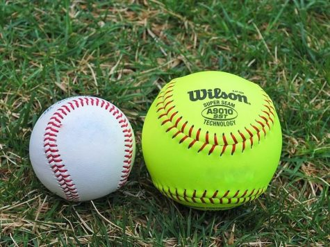 Baseball vs. Softball: An Ongoing Debate