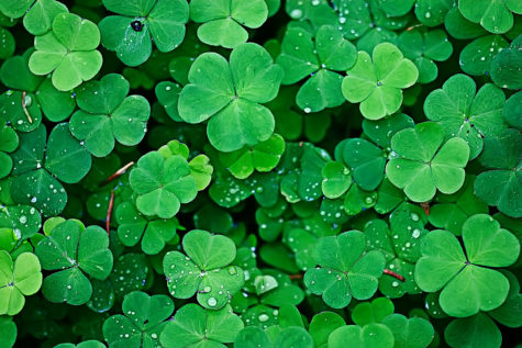 The History of Saint Patrick